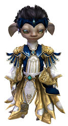 Stately armor asura male front.jpg