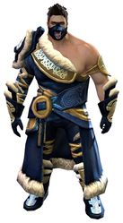 Wolfborn armor norn male front.jpg