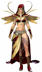 Winged armor norn female front.jpg