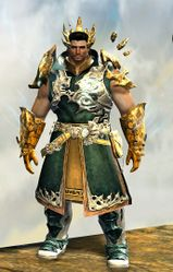 Leystone armor (light) norn male front.jpg
