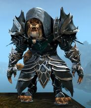 Marjory's Shrouded Outfit charr male front.jpg