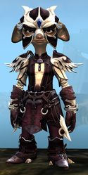 Triumphant armor (light) asura female front.jpg