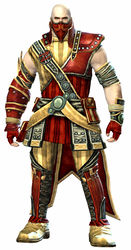 Heritage armor (medium) norn male front.jpg