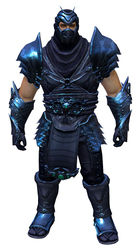 Shadow Assassin Outfit norn male front.jpg