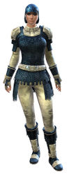 Worn Chain armor norn female front.jpg