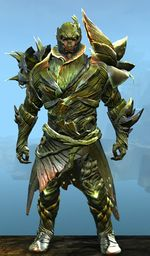 Verdant Executor Outfit norn male front.jpg