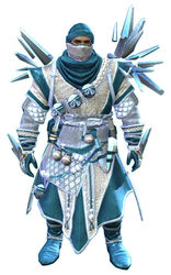 Crystal Nomad Outfit norn male front.jpg