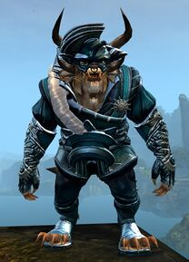 Winter Solstice Outfit charr male front.jpg