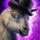 Mini Elegant Llama.png