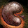 Mordrem Thrasher Kidney.png