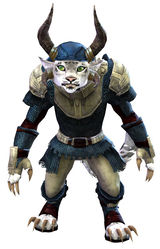 Worn Chain armor charr female front.jpg