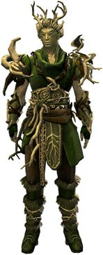 Nature's Oath Outfit sylvari male front.jpg