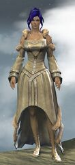 Wedding Attire Outfit norn female front.jpg