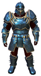 Ascalonian Protector armor norn male front.jpg