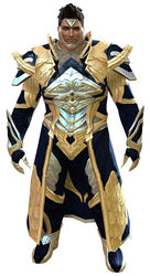 Council Watch armor norn male front.jpg
