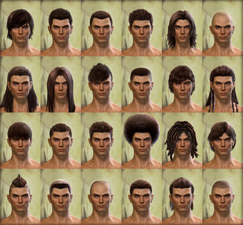 Human male hair styles.jpg