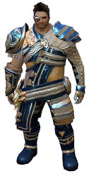 Viper's armor norn male front.jpg