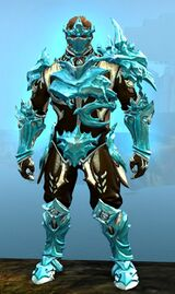 Ice Encasement Outfit norn male front.jpg